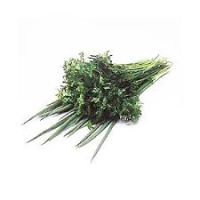 Cheiro Verde (cebolinha + salsinha) Orgânico-0